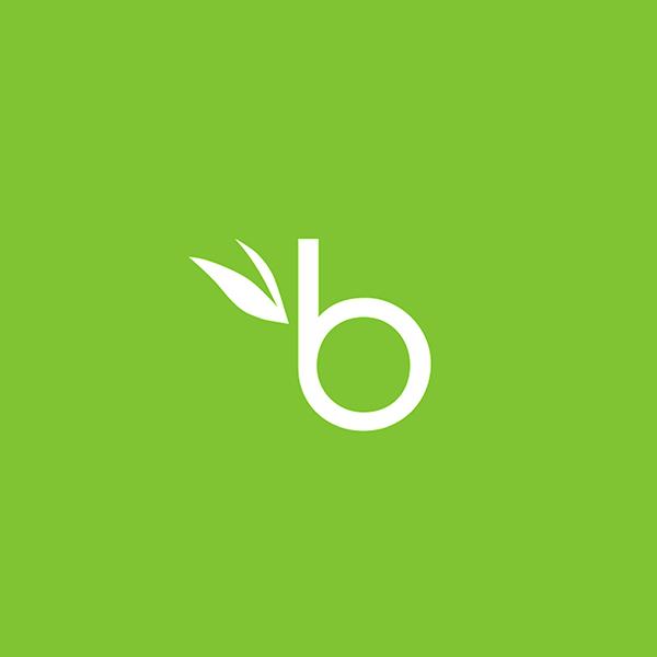 BambooHR - tryall