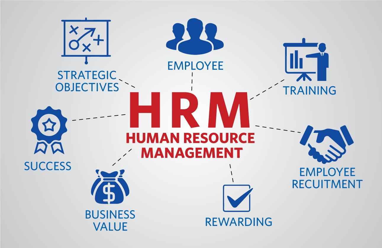 Quản trị nhân lực (Human Resource Management - HRM) là gì?